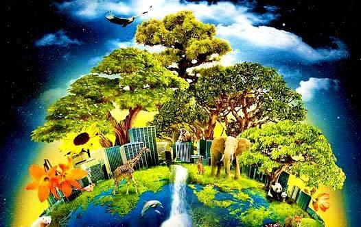 Mẹ Trái Đất – Mother Earth