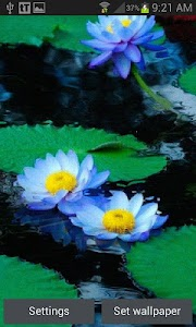 Nature Lotus Live Wallpaper screenshot 0