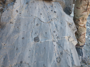 Photo: Marble Canyon. Marble with chert nodules.
