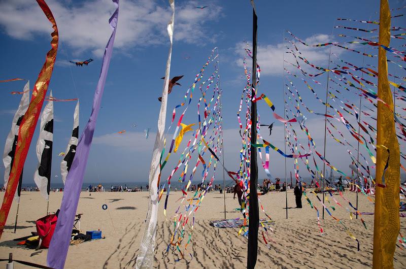 colori al vento, di walterferretti