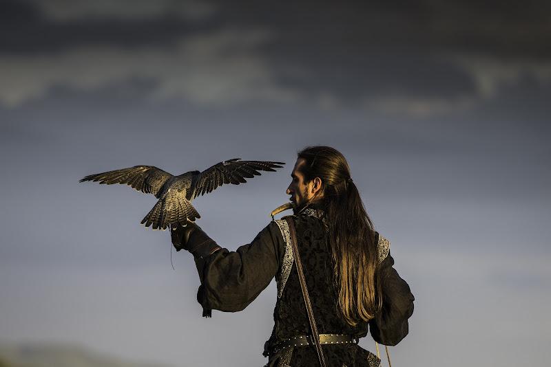 Il falconiere di Fiore Doncovio