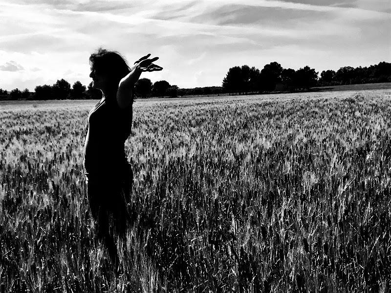 """...libertà va cercando, ch'è sì cara, come sa chi per lei vita rifiuta..."" di arianna_de_palma"
