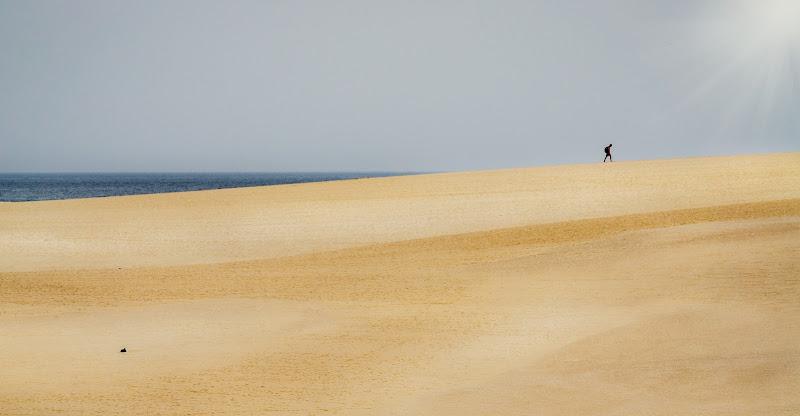 Fra sabbia e mare di aliscaforotto