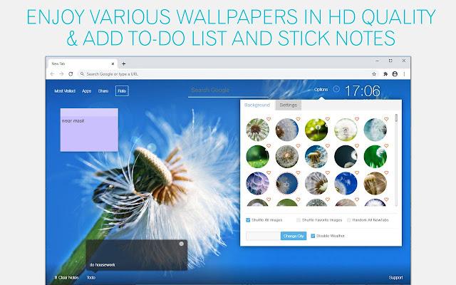 Dandelion Wallpaper HD Dandelions New Tab