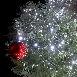 Albero di Natale luminoso by Patrizia Emiliani - Public Holidays Christmas ( albero,  )