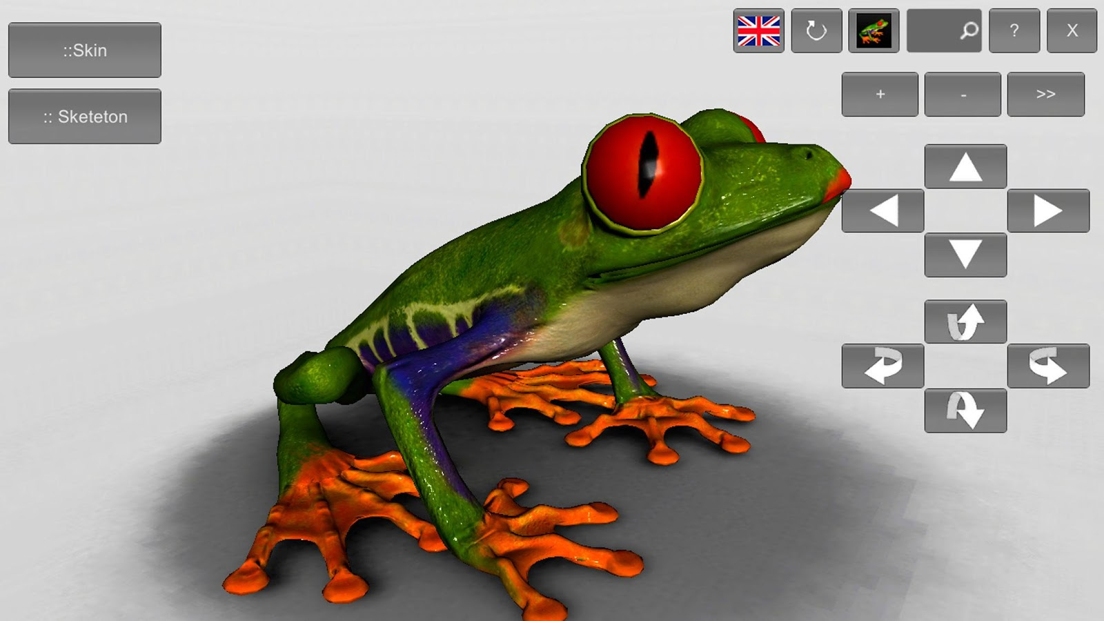 3D Frog Skeleton- screenshot