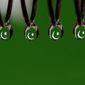 Macro of Droplets with Pakistan Refraction by Awais Khalid - Abstract Macro