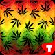 Weed Ganja Theme GO ADW APEX