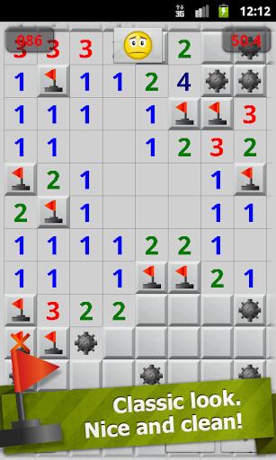 Minesweeper Professional