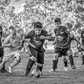 Hustle At Centre Field - B&W by Garry Dosa - Sports & Fitness Soccer/Association football ( running, soccer, ball, b&w, sports, outdoors, teams, action, boys, black and white )