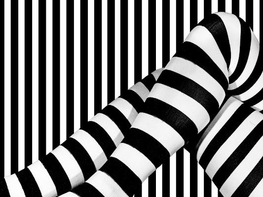 Camouflage di Sergio Rapagnà