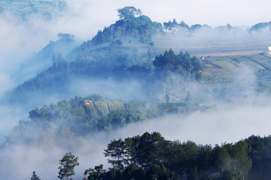 Tebing Karaton #4 by Edwin Pfim - Landscapes Mountains & Hills (  )