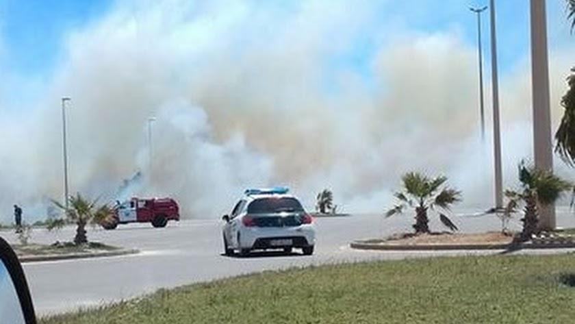 Un incendio en Almerimar acaba con 6.000 metros cuadrados de cañaveral