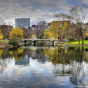 Boston Public Garden by AsDigiClicks Photography - Landscapes Waterscapes ( boston public garden, boston downtown, boston, public garden, waterscapes )