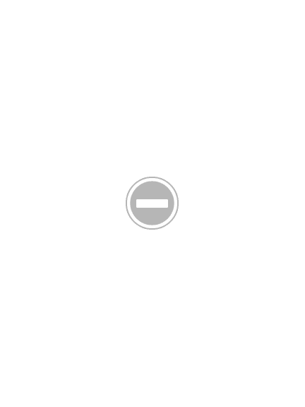 Photo: Letchworth Lower Falls at High Water, 18X24, $1350