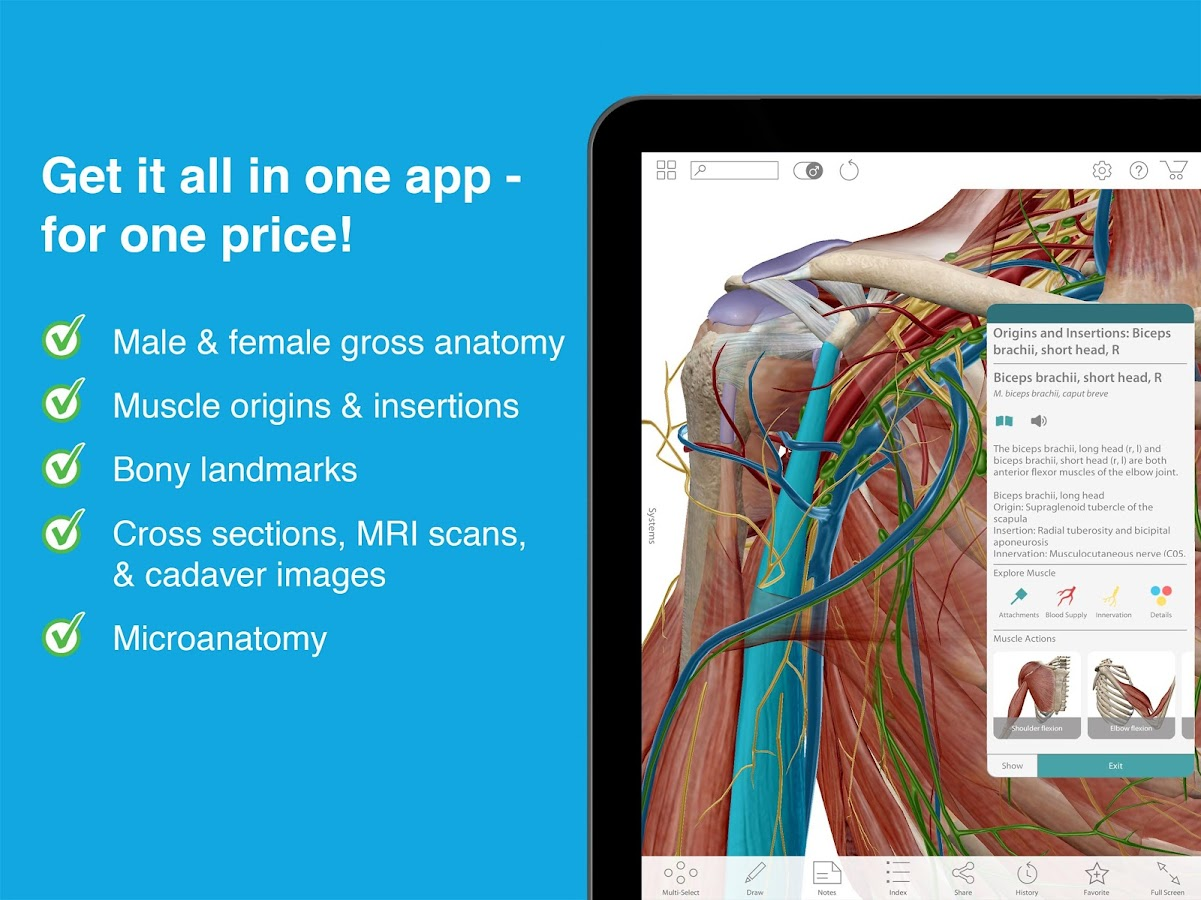 Human Anatomy Atlas 2017- screenshot