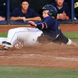 Safe! by Patrick Barron - Sports & Fitness Baseball ( michigan baseball safe runner home plate slide sliding )