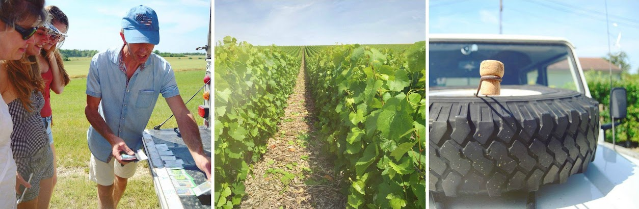 Exploring the vineyards in the Champagne region | via It's Travel O'Clock