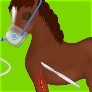 Horse Surgery Game for PC and MAC