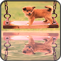 Water Reflection Photo icon