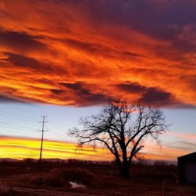Colorado Sunset by Gerardo Texidor - Landscapes Sunsets & Sunrises