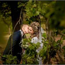 Wedding photographer Aleksandr Kuzmich (WlaAl). Photo of 06.02.2016