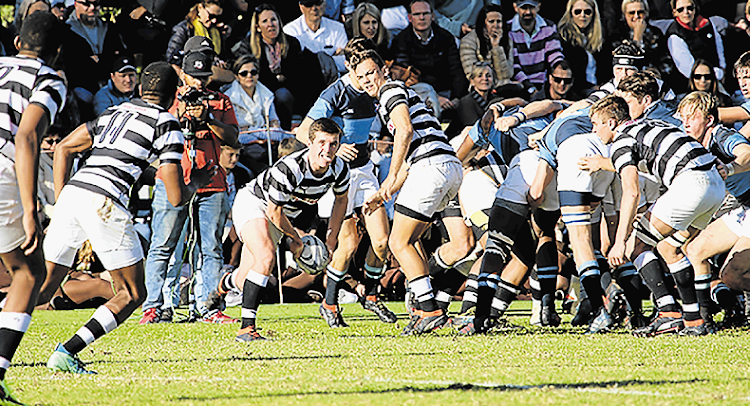 Selborne's Mntungwa Mapantsela on the drive against St Andrew's College earlier this year