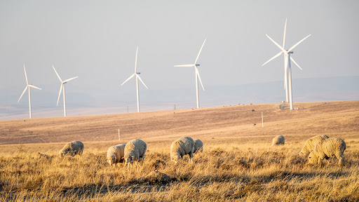 The 123MW Golden Valley Wind Energy Facility reached commercial operations on 1 May.