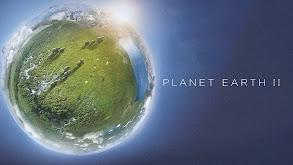 Planet Earth II thumbnail
