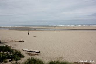 Photo: (Year 2) Day 347 - Cannon Beach