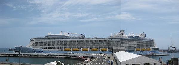 Photo: Quantum of the Seas - Panorama