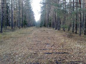 Photo: Остатки железной дороги