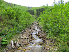Photo: 16.Raz z prawej, raz z lewej strony potoku. Trzeba uważać, żeby nie rymsnąć do wody ;)