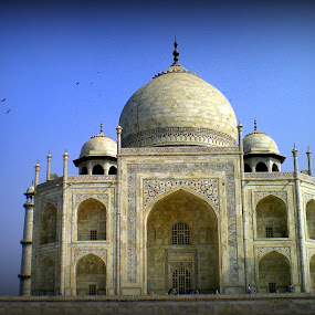 History through the lens by Mathangi Jeypal - Buildings & Architecture Public & Historical ( taj mahal, agra, india, world heritage, unesco )