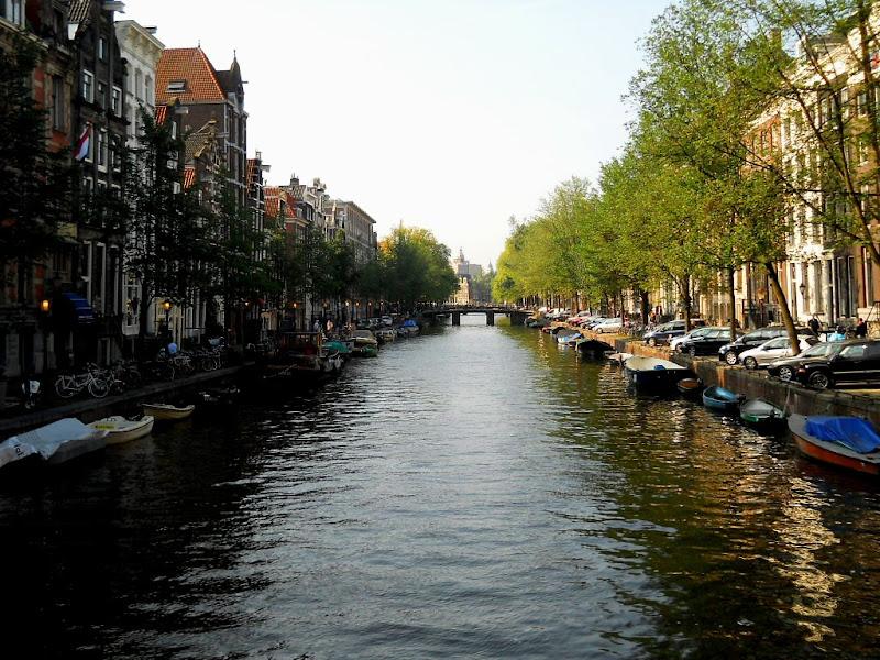 Ombra e Luce (ad Amsterdam) di Rossella Valitutti