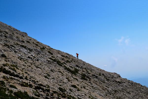in montagna di paolo_ross