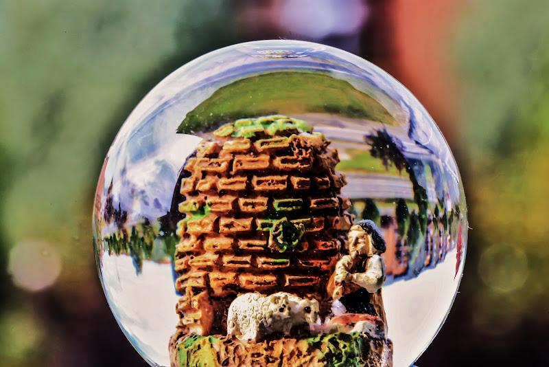 Nella palla di vetro di ScrofaniRosaria