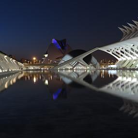 Calatrava buildings, Valencia by Luis Felipe Moreno Vázquez - Uncategorized All Uncategorized ( buildings, reflections, night, valencia, architecture, spain, calatrava )