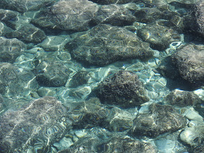 Photo: The water is quite clear