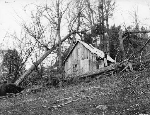 Hurricane-damaged Sugar House and Sugar Orchard of Mr. Burt Cloud, Located between Union Village and Pompanoosuc, Vermont