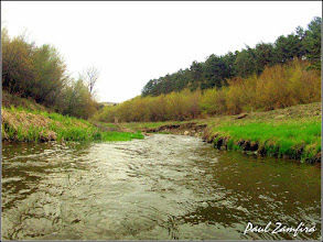 Photo: Cheile Tureniului - zona de defileu din aval - Paraul Racilor -  (2012.04.20)
