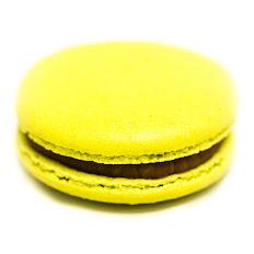 Macaron Praliné - Lime プラリネ ライム