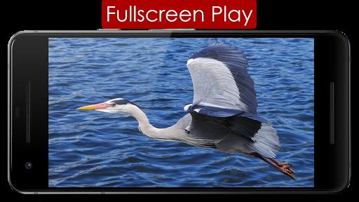 Play Lite for YouTube 3.5 screenshots 8