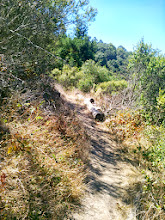 Photo: Back on the upper portion of the trail.