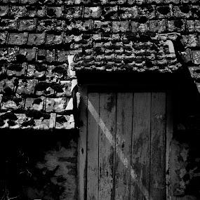 Door by Attila Kropf - Buildings & Architecture Other Interior ( building, cheer, door, blackwhite, abandoned )
