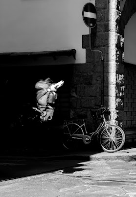Ops..un cavallo! di Pier Francesco Borgatti