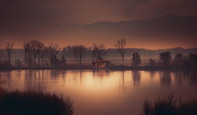Lago della Gherardesca di Simonetti Andrea
