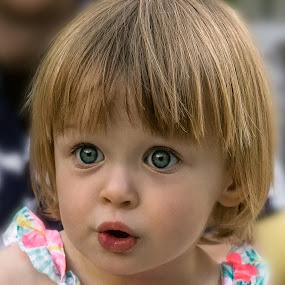 Precious by David Hammond - Babies & Children Children Candids ( girl, children, candid, toddler, people, young,  )