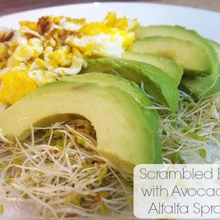 Cooking Alfalfa Sprouts Recipes.