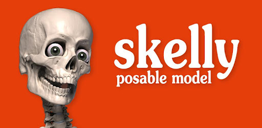 Skelly is a fully poseable, anatomically correct reference skeleton for artists.